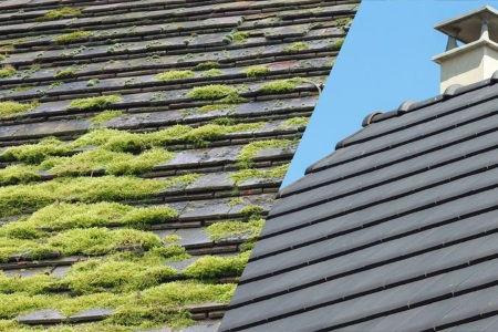 Nettoyage, démoussage et traitement des toitures à Brignais, Lyon et tout le Rhone 69