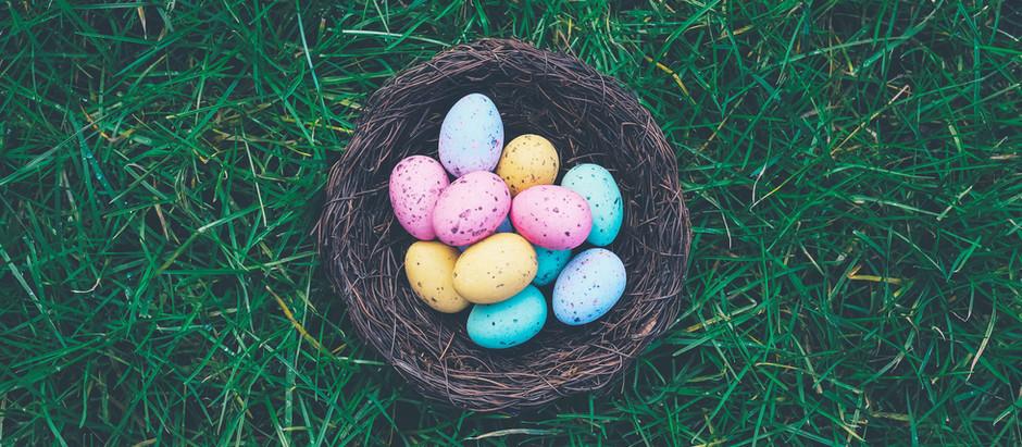A Springtime Egg & Nest Ritual