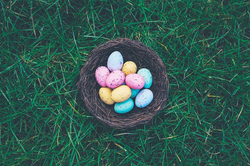 Uova in un cestino