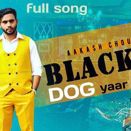 Blackdog Yaar