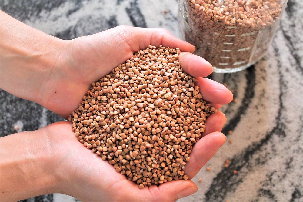 Two hands held together and full of buckwheat groats