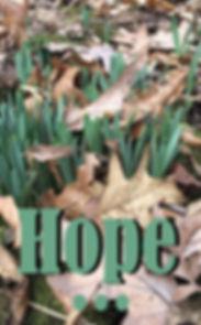 hope (spring) copy.jpg