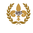 diamond Capital (1).png
