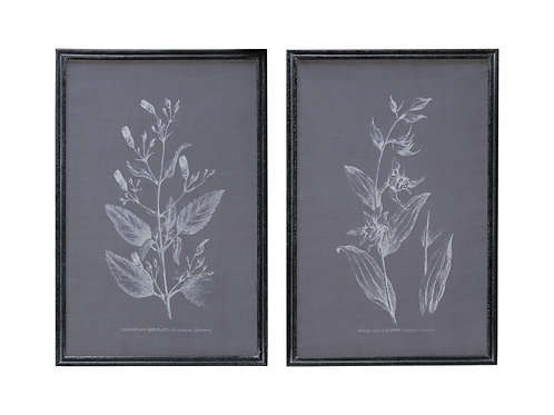 Botanical on Transparent Silk Screen Wall Décor with Wood Frame (Set of 2 Styles