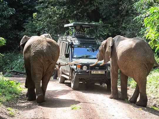 Tanzania, safari, volcan