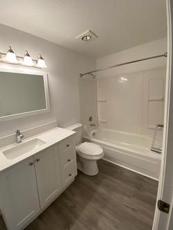 2020 Bathroom Remodel
