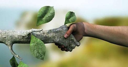 meio-ambiente-e-recursos-sustentaveis.jp