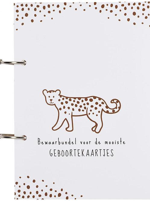 Bundel Geboorte Cheetah Camel