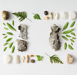 Creative natural layout made of leaves, bark and stones
