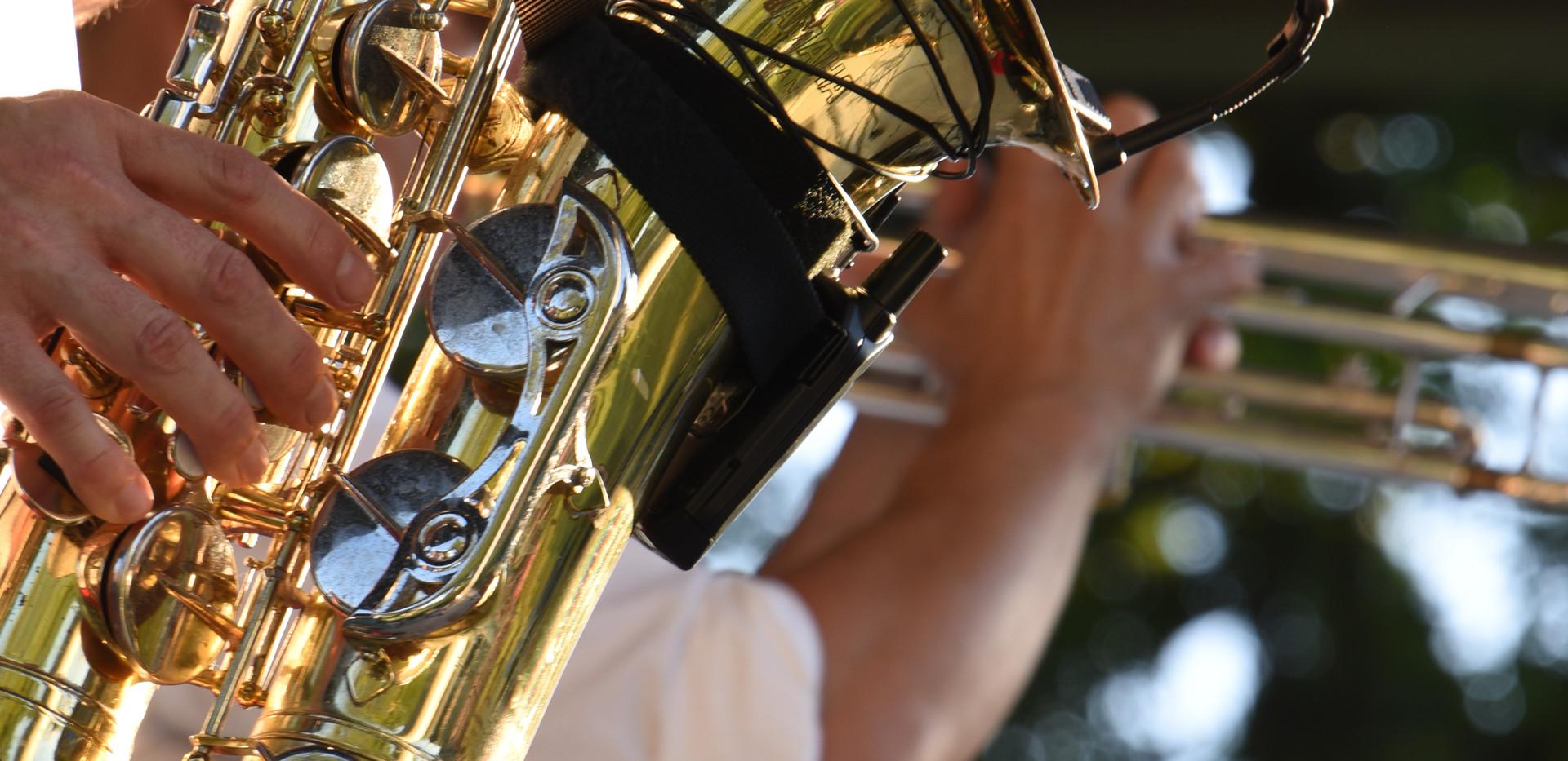 Havana NRG horns close up
