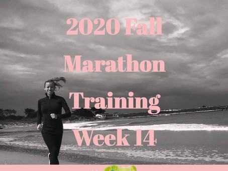 2020 Fall Marathon Training - Week 14