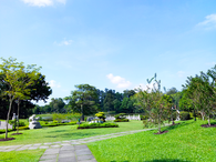 Chinese Garden Meditation Space