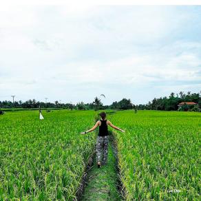 Spiritual Retreat at Bali