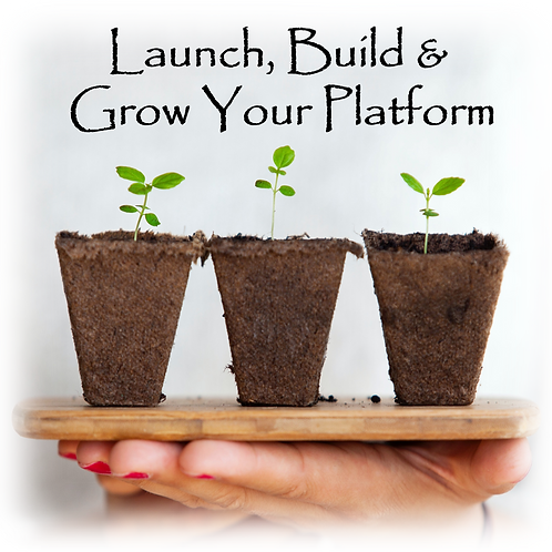 Launch, Build & Grow Your Platform