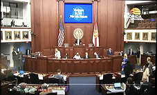 Controversial GOP voting bill passes Florida Senate; heads to House
