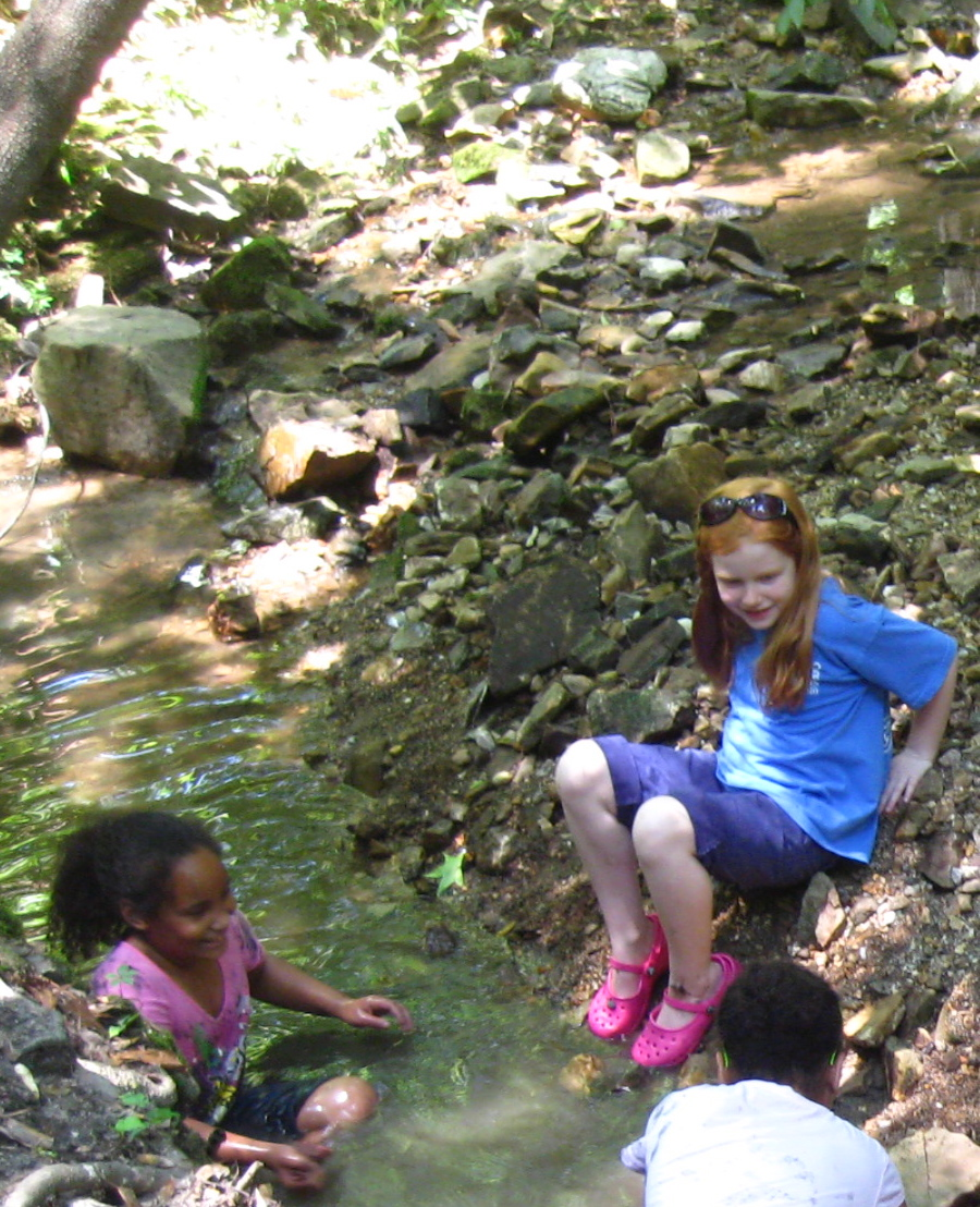 In the creek