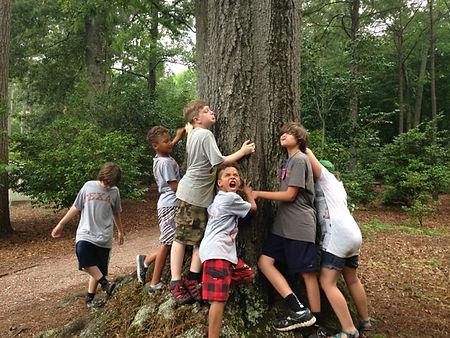 Boy Tree hugger.jpg