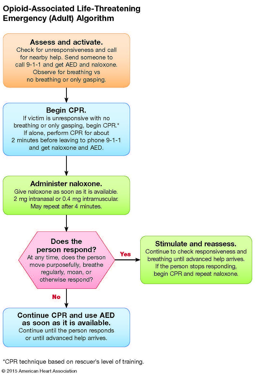 Opioid-Associated Life-Threatening Emergency (Adult) Algorithm