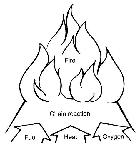 Fuel, heat, oxygen, and their chain reaction are needed for a fire to burn.