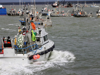 BBRSDA Wants You! (to teach F/V Drill Conductor classes in Bristol Bay)