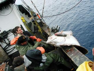 NEC Needs Alaska Fishermen Volunteers for Sleep Deprivation Study