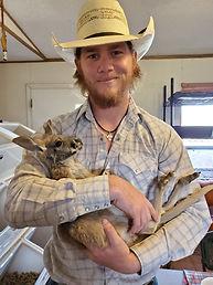 Baby Red Kangaroo, Red Kangaroo, Exotic Animal, Exotic Pet, Owing a Kangaroo, Kangaroo info