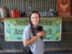 Janda Exotics Staff, Dwarf Pigglet, Zoo Aide, Pig, Farm Animals