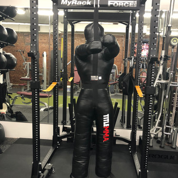 mma grappling dummy