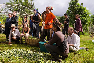 Formationpermaculture-120.jpg