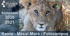 Kenia - Masai-Mara