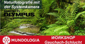 Workshop Gauchach