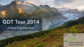 Am Aletschgletscher