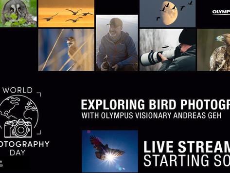 Exploring Bird Photography