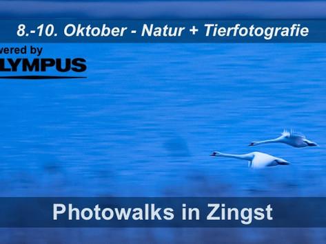 Photowalks in Zingst