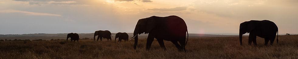 2109-Kenia.jpg