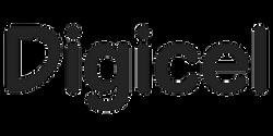 didgicel edited
