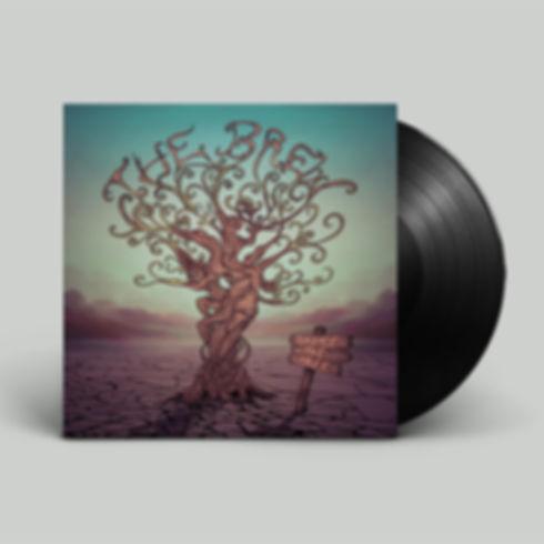 STT_Vinyl.jpg