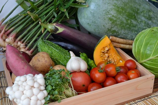 いろいろな野菜たち