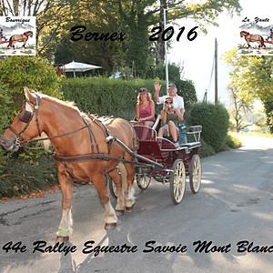 Sport : Rallye Equestre Savoie Mont-llanc