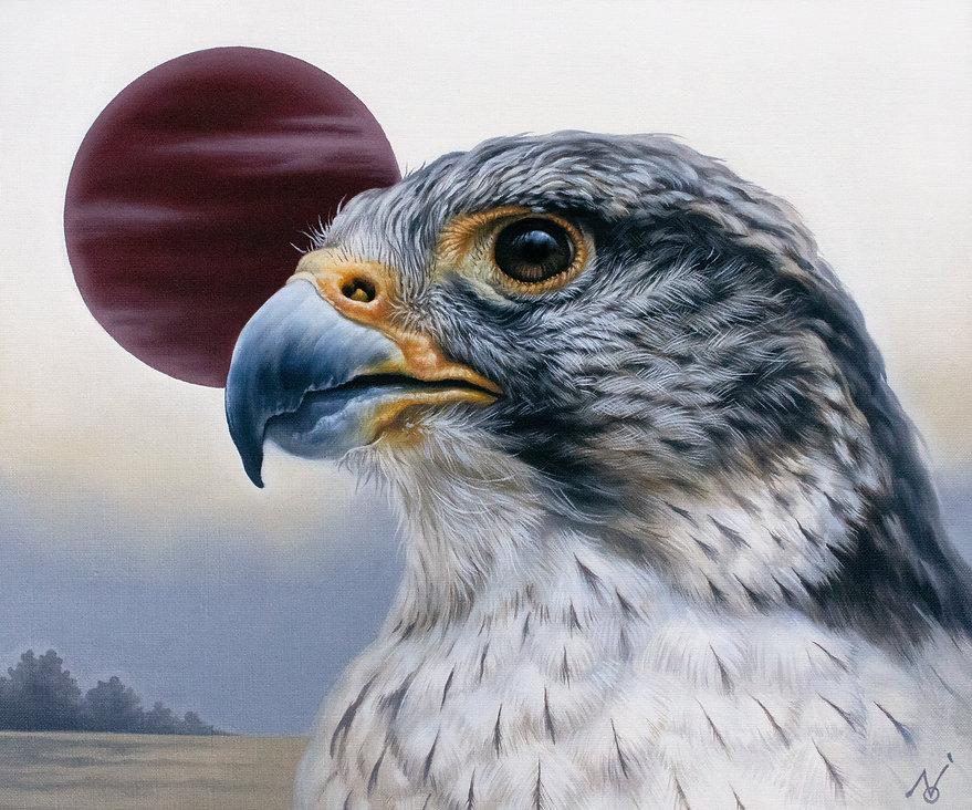 Falcon-Face2021-small.jpg