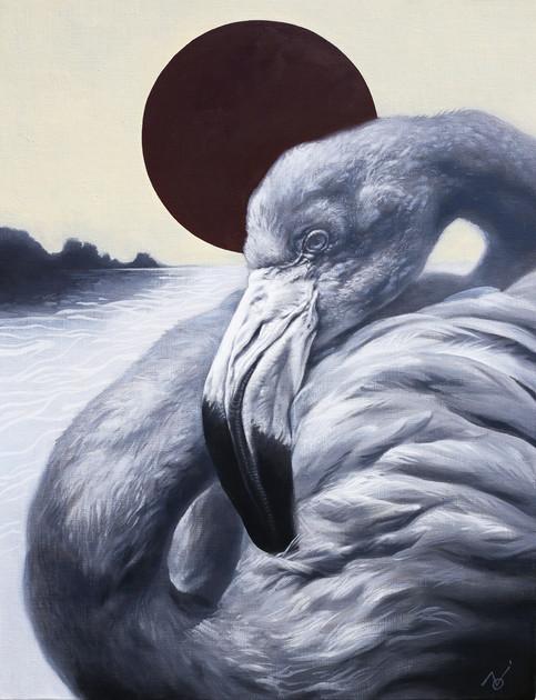 The Moment - Flamingo / 2019 / Oil on canvas / 50 x 65.2 x 2 cm