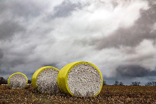 Cotton_Harvest_18_1267-FINAL.jpg