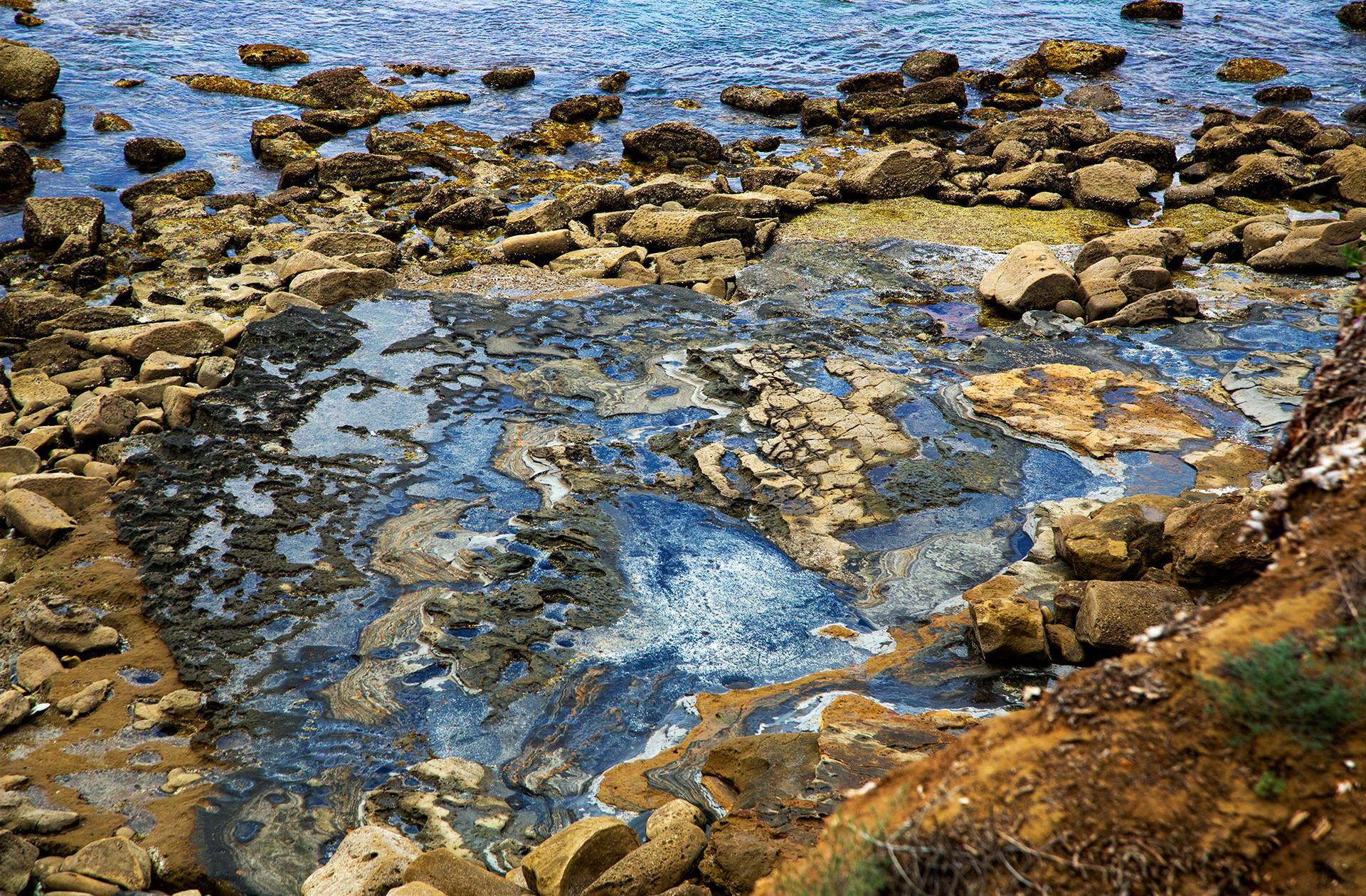Tidal Pools, Point Loma, California