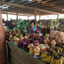 Fijian Market
