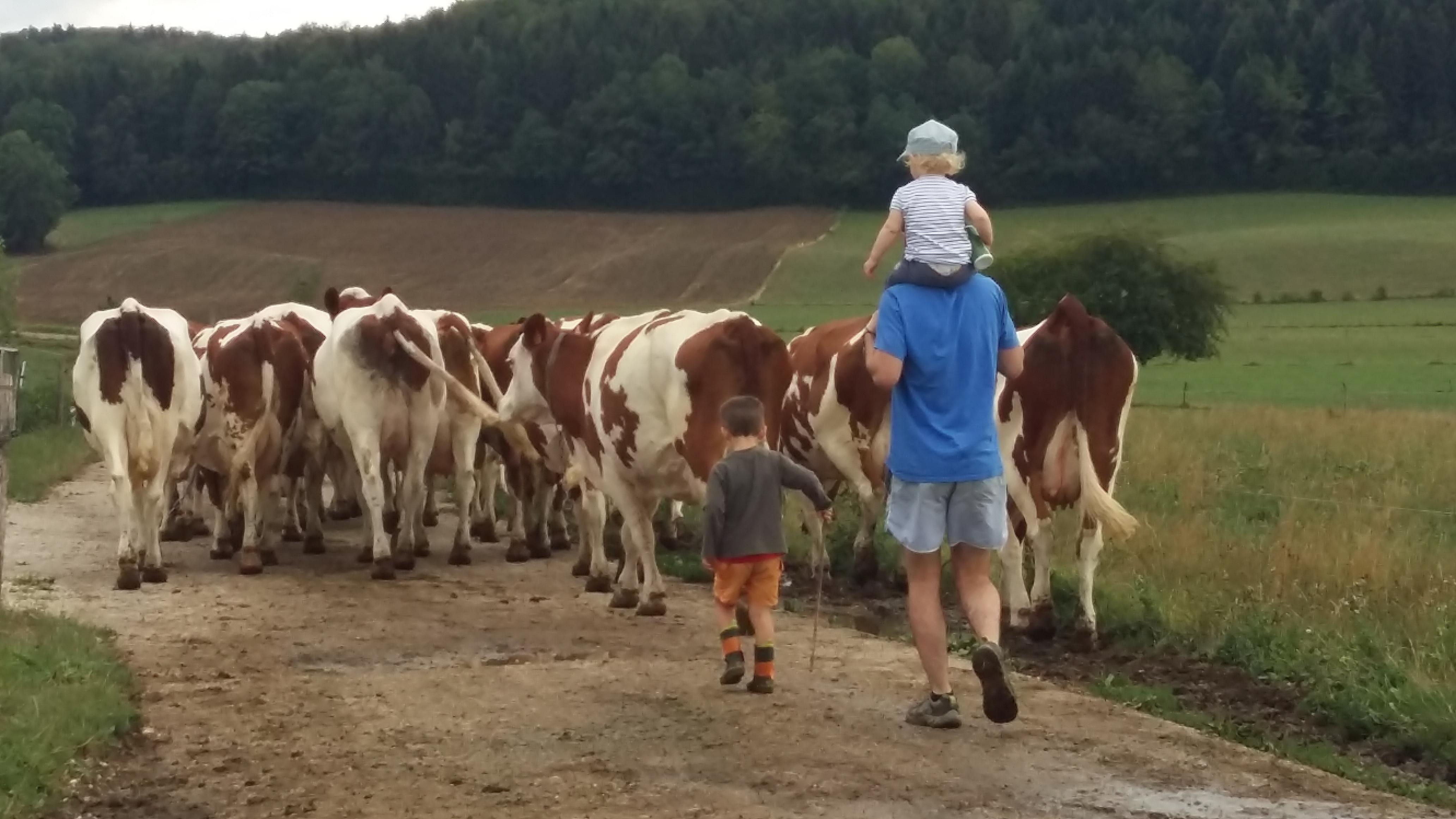 Une escapade a la campagne gite Jura
