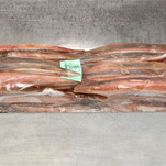 Squid 3.jpg