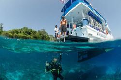 Phi Phi Boat entry