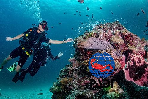 PADI SCUBA DIVER COURSE - Thailand, Simple Life Divers
