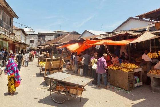 Zanzibar-Ocean_StoneTown11.jpg