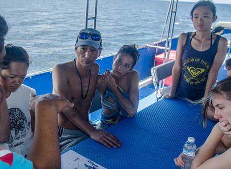 Diving Phi Phi Islands for the 1st time......